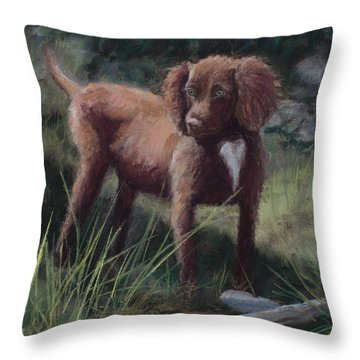 Looking For Adventure Throw Pillow by Mary Benke
