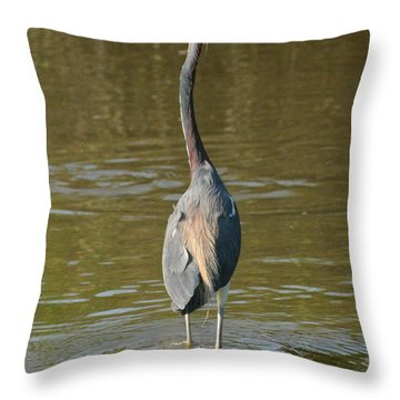 Looking For Breakfast..... Throw Pillow