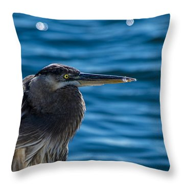 Looking For Lunch Throw Pillow by Marvin Spates