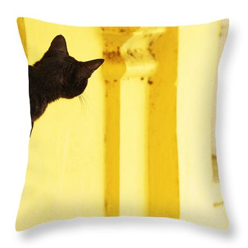 Looking For Mouse Throw Pillow