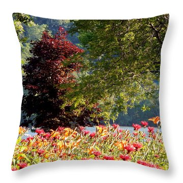 Looking For Peace Throw Pillow