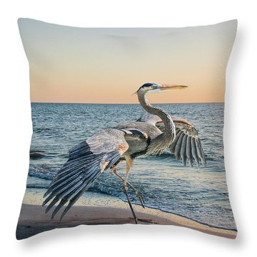 Looking For Supper Throw Pillow by Brian Tarr