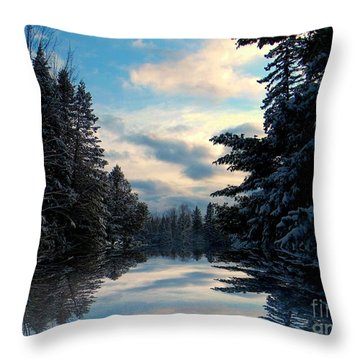 Throw Pillow featuring the photograph Looking Glass by Elfriede Fulda