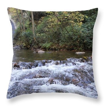 Looking Glass Falls Downstream Throw Pillow