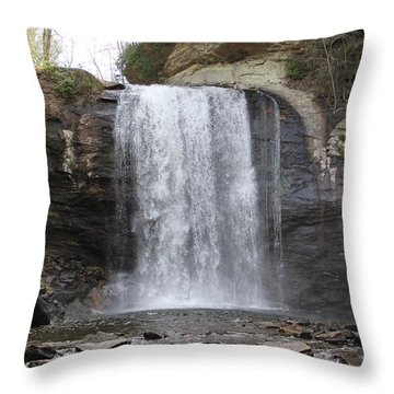 Looking Glass Falls Front View Throw Pillow