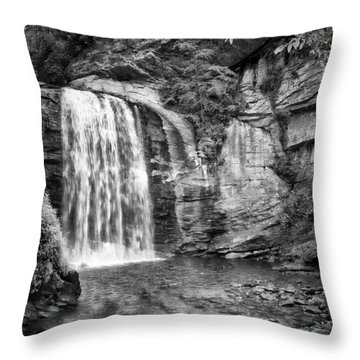 Looking Glass Falls Throw Pillow by Howard Salmon