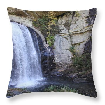 Looking Glass Falls Side View Throw Pillow