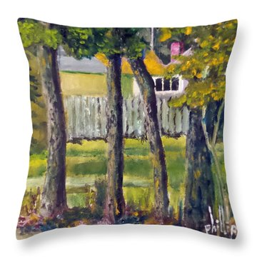 Throw Pillow featuring the painting Looking Into Brenn Marr by Jim Phillips