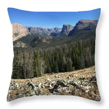 Looking Into The Bridger Wild Lands Throw Pillow