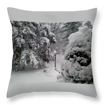 Looking Out My Front Door Throw Pillow by Carol Wisniewski