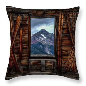 Looking Past Throw Pillow