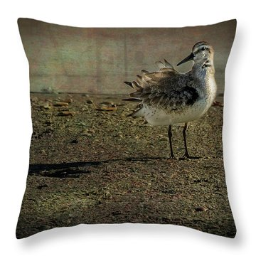 Looking Pretty Throw Pillow