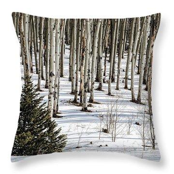 Looking Through The Aspen Throw Pillow