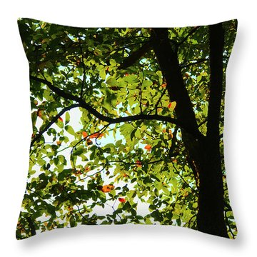 Looking Thru The Leaves Three Throw Pillow