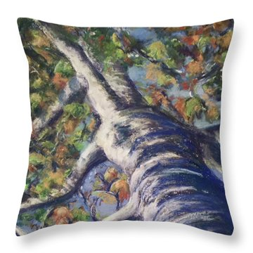 Looking Up - Fall Throw Pillow