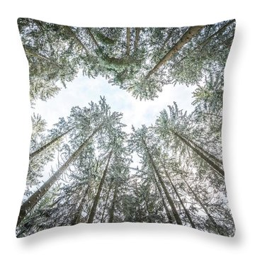 Throw Pillow featuring the photograph Looking Up In The Forest by Hannes Cmarits