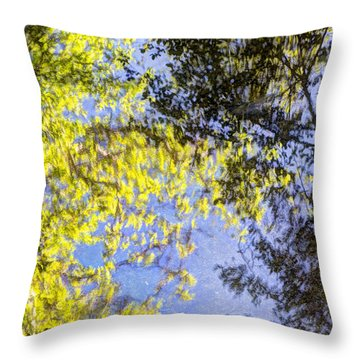 Throw Pillow featuring the photograph Looking Up Or Down by Heidi Smith