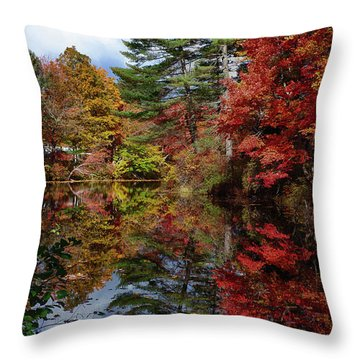 Throw Pillow featuring the photograph Looking Up The Chocorua River by Jeff Folger