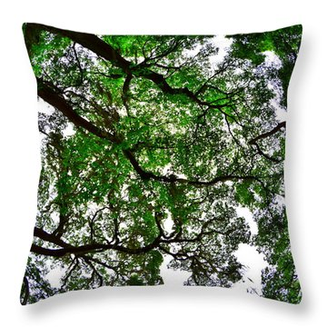 Looking Up The Oaks Throw Pillow