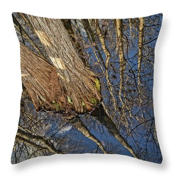 Throw Pillow featuring the photograph Looking Up While Looking Down by Debra and Dave Vanderlaan