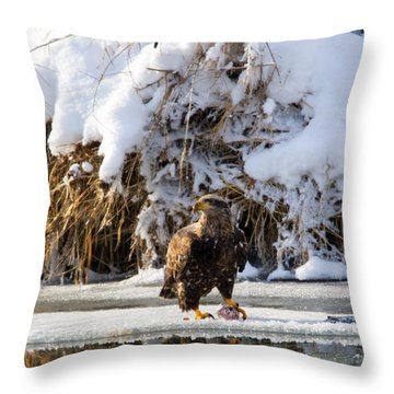 Lookout Above Throw Pillow by Mike Dawson
