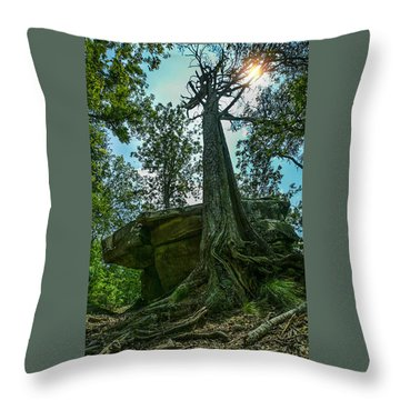 Throw Pillow featuring the photograph Lookout Mountain, Tn by Don Olea