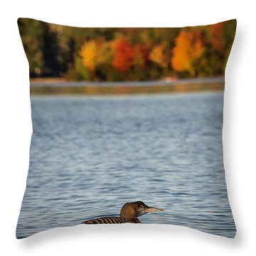 Loon Chick Throw Pillow