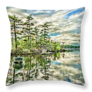 Loon Island Throw Pillow by Daniel Hebard