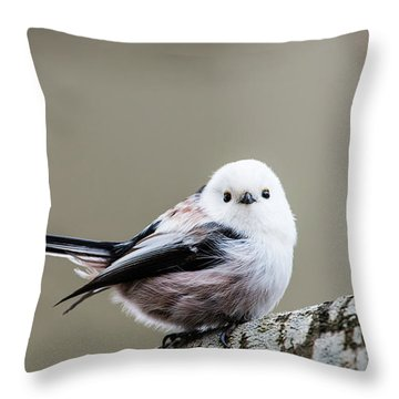 Loong Tailed Throw Pillow by Torbjorn Swenelius