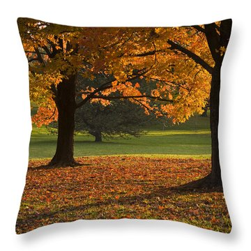 Loose Park Maple Trees Throw Pillow by Chad Davis