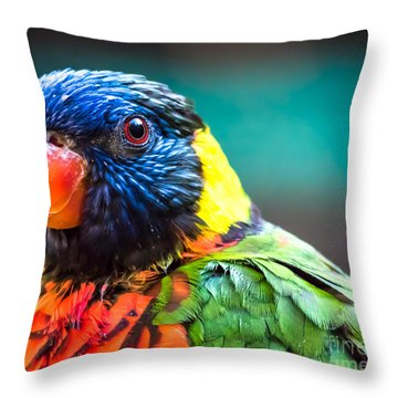 Lorikeet Glance Throw Pillow