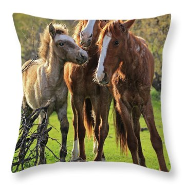 Amigos Throw Pillow