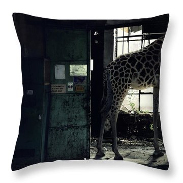 Old Abandoned Building Throw Pillows