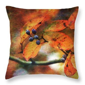 Lost Autumns Beauty 6570 Ldp_2 Throw Pillow