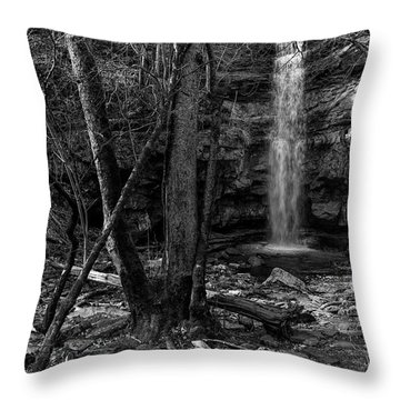 Lost Creek In Black And White Throw Pillow