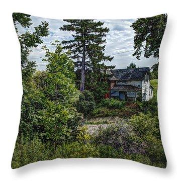 Lost Farm Throw Pillow