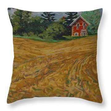 Lost Homestead Throw Pillow
