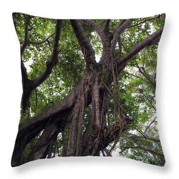 Lost In The Branches Throw Pillow