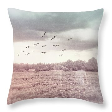 Lost In The Fields Of Time Throw Pillow