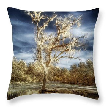 Lost In The Flood Throw Pillow