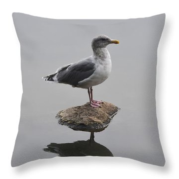 Lost In The Lagoon Throw Pillow