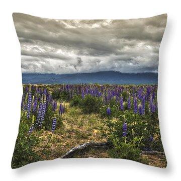Lost In The Lupine Throw Pillow