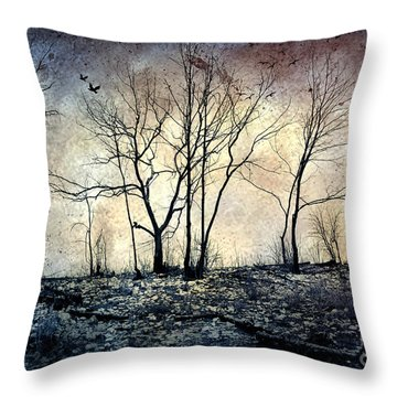 Lost In The Woods Throw Pillow by Iris Greenwell