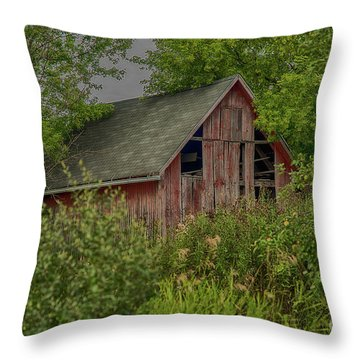 Lost In The Woods Throw Pillow