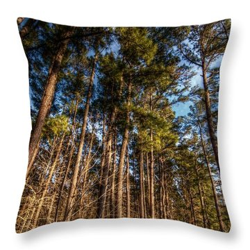 Lost In The Woods Throw Pillow by Linda Unger