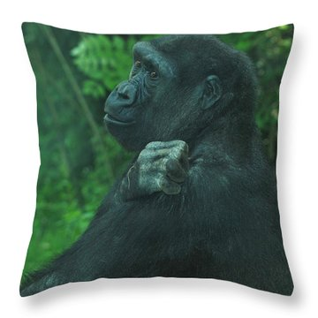 Throw Pillow featuring the photograph Lost In Thought by Richard Bryce and Family