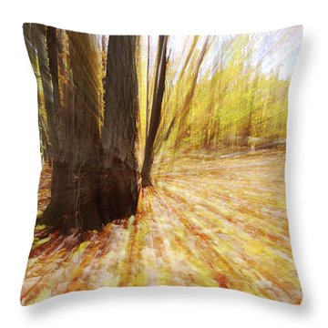 Lost In Time Throw Pillow by Mircea Costina Photography