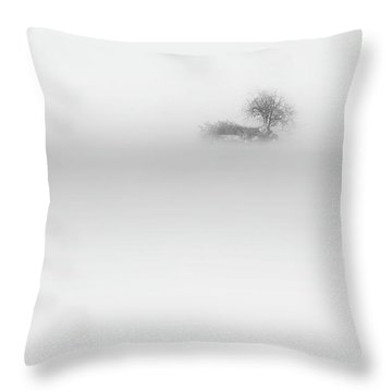Throw Pillow featuring the photograph Lost Island by Bill Wakeley