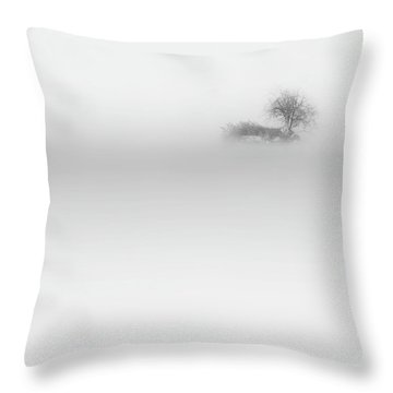 Throw Pillow featuring the photograph Lost Island Square by Bill Wakeley