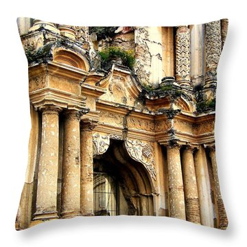 Lost Treasures Throw Pillow by Karen Wiles